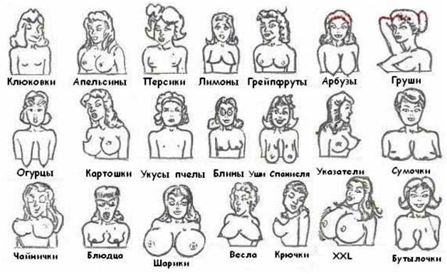 разные формы грудей