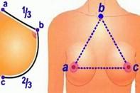Формула для проверки упругости груди